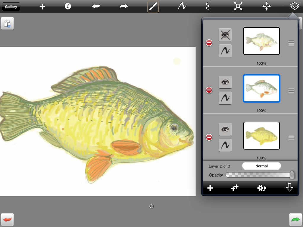 middle layer on my fish picture