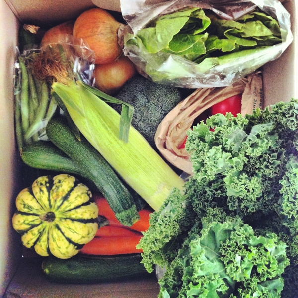 I began an obsession with vegetable boxes, buying a pot luck box every couple of weeks and trying to cook as many new healthy dishes as possible.