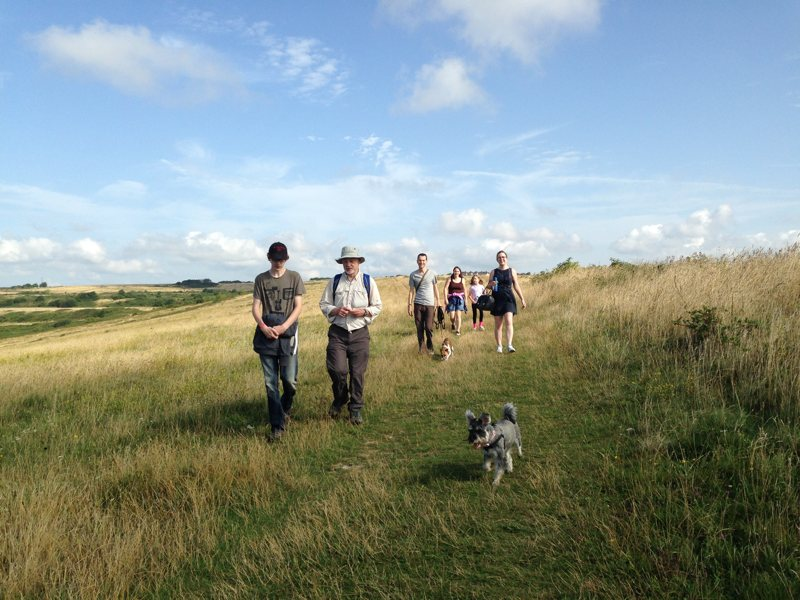 Six walkers and their dogs in Sheepcote Valley