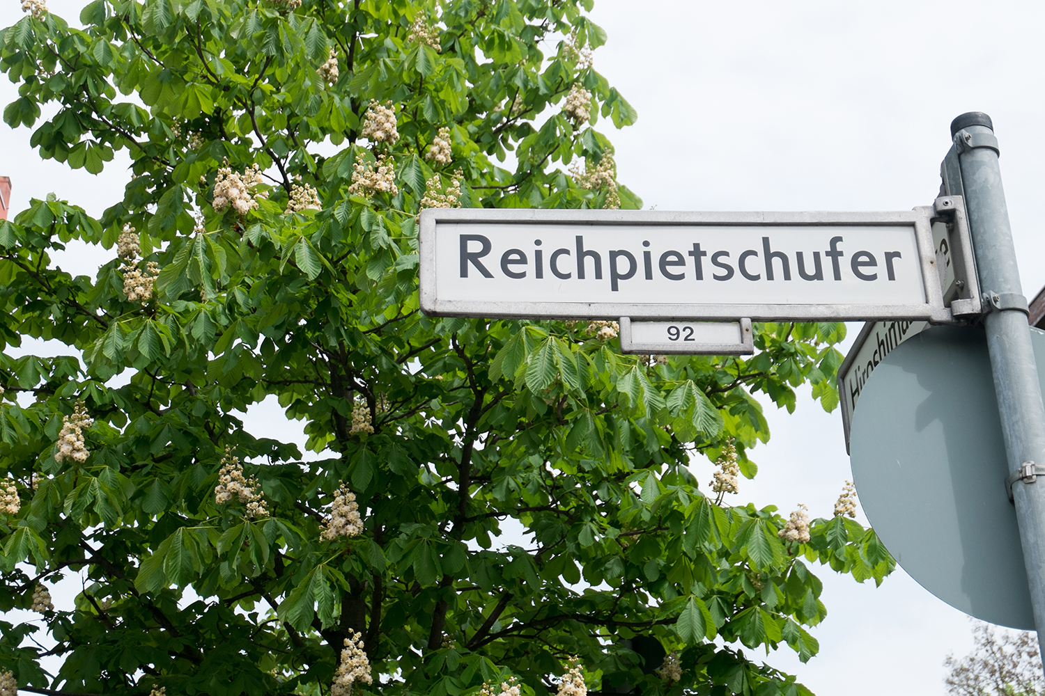 Street sign saying 'Reichpietschufer' in front of a chestnut tree