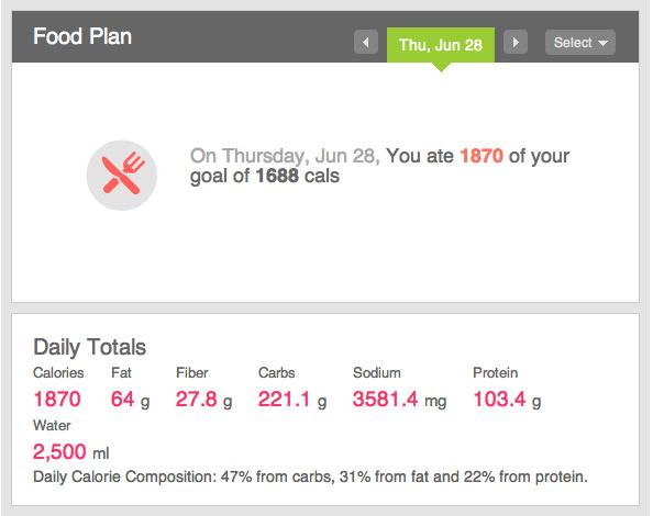 Fitbit food goals