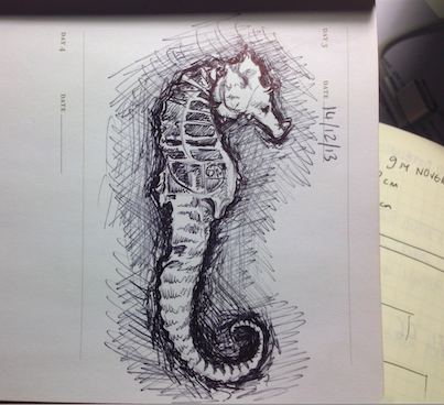 sketch of a Fringe-style seahorse