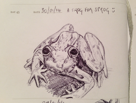 sketch of a frog
