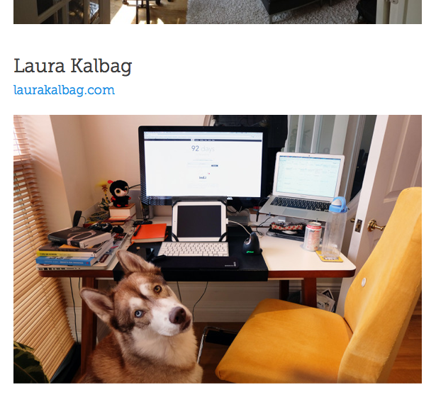 a photo of my desk, complete with a lot of junk and a dog in shot
